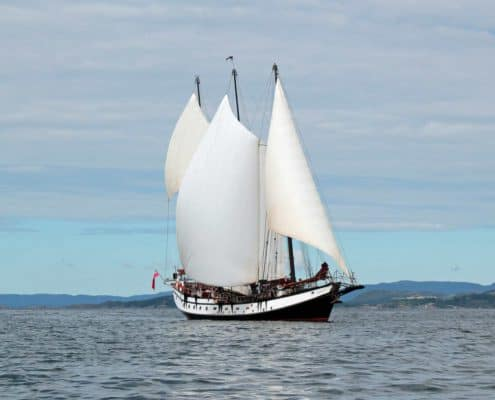 Schooner Trinovante sailing amongst islands to the north of Stavanger, Norway.