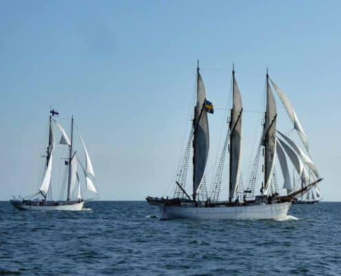 The schooners INGO and Joanna Saturna, Tall ships Race 2017