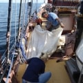 Trinovante sailors folding the fishermans topsail.