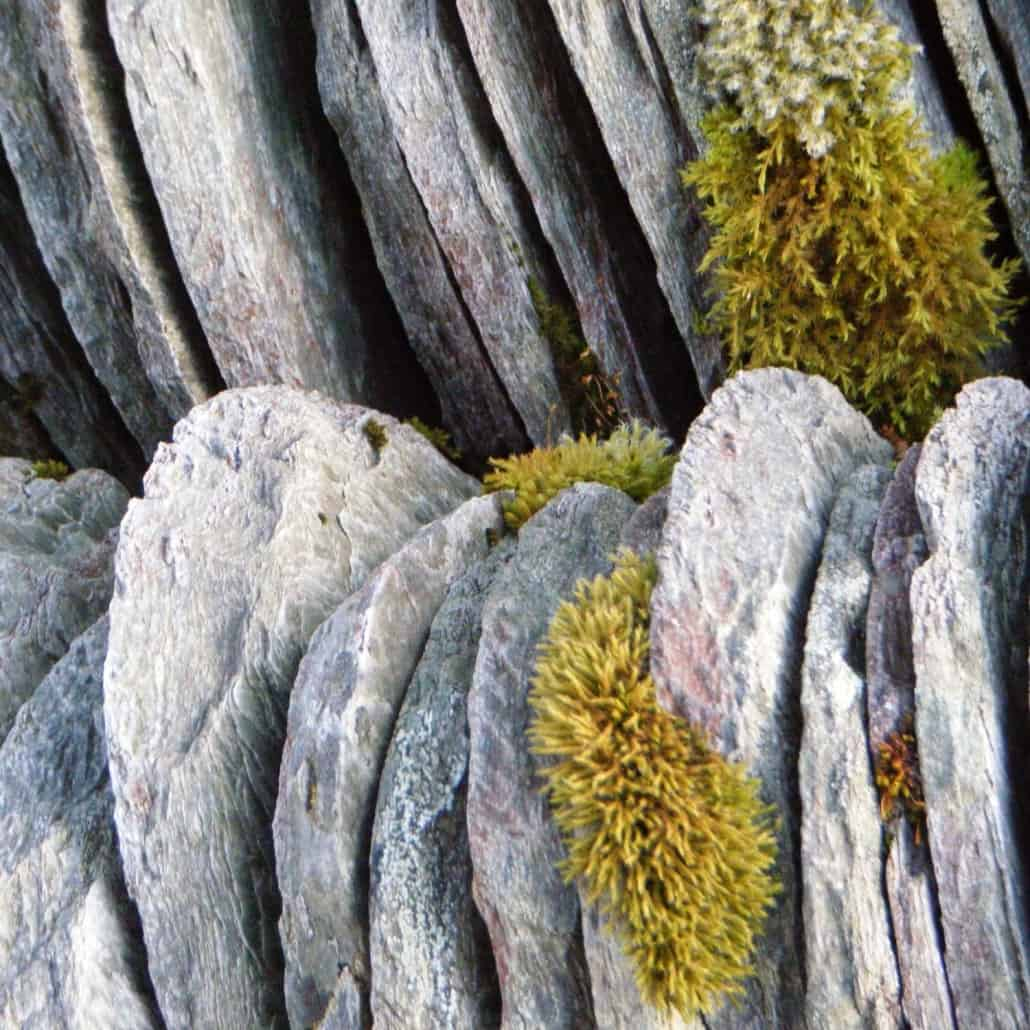Textures Of Sailing in Norway - Roof Tiles